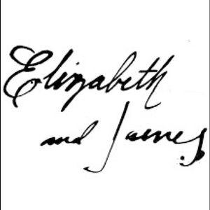 Elizabeth and James Dresses - ELIZABETH & JAMES LACE PARTY DRESS SZ 2 $398 NWT